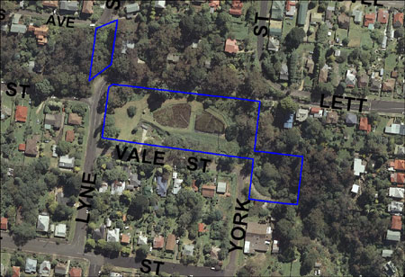 Vale Street Bushcare area map